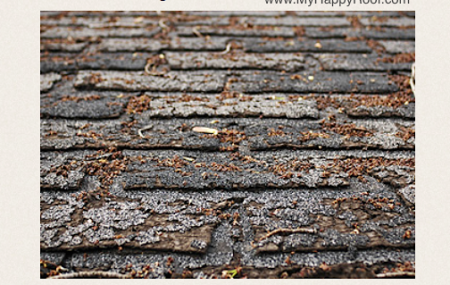 shingles repair roofing companies colorado springs