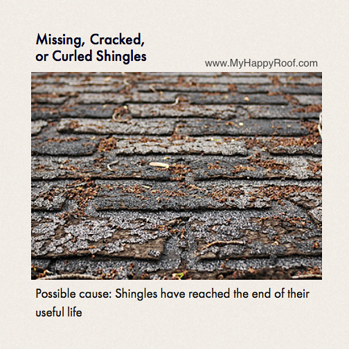 shingles repair colorado springs company roofing replacement